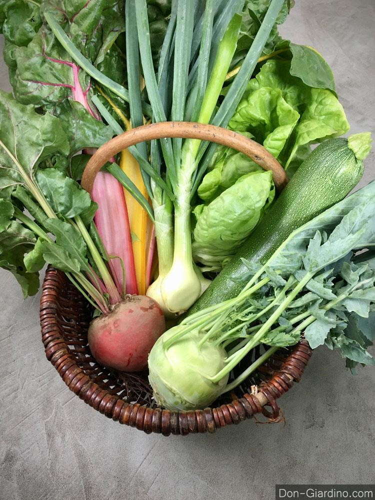 Mein Gemüsekorb, bei Interesse bei mir melden, verkauf nur ab Produktionsstätte in Urproduktion