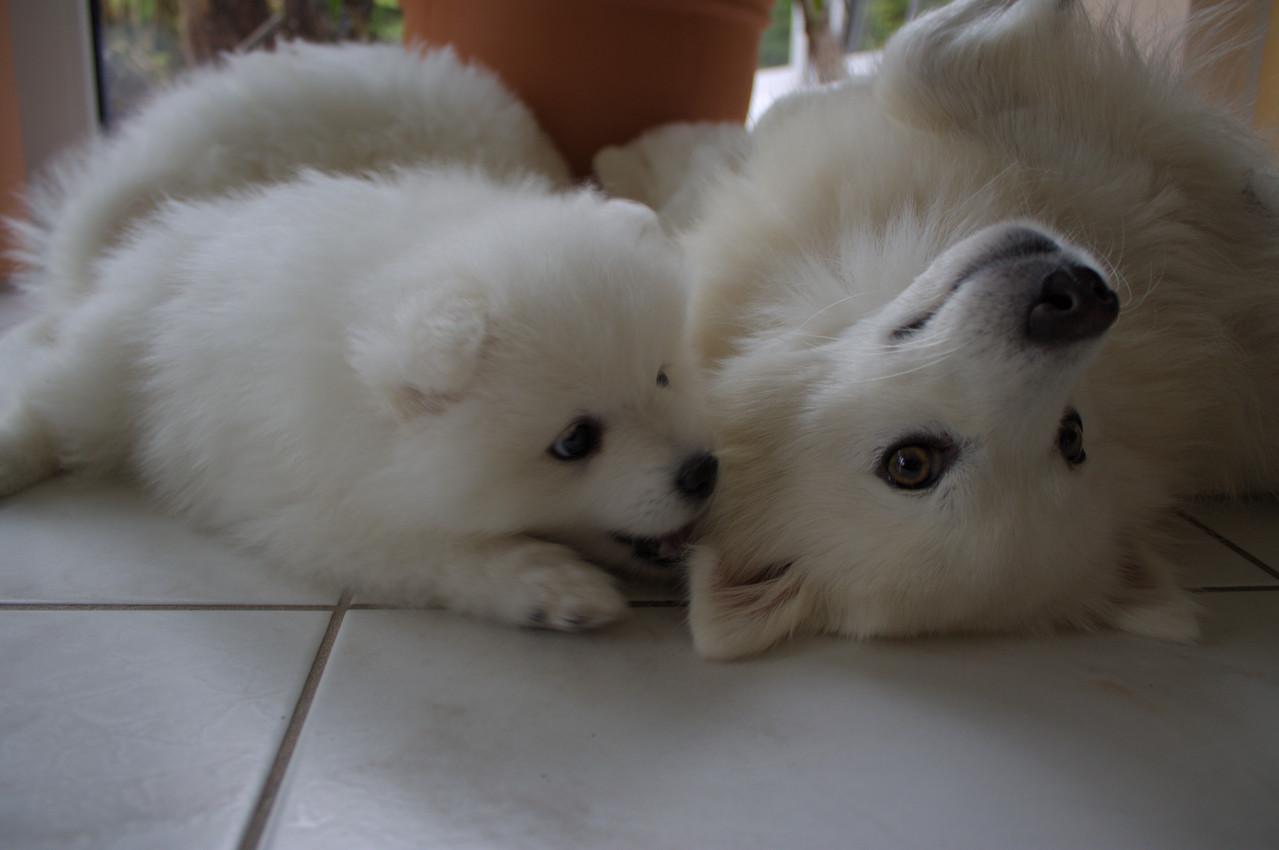 Am Schönsten ist es, wenn Mama entspannt mitspielt!