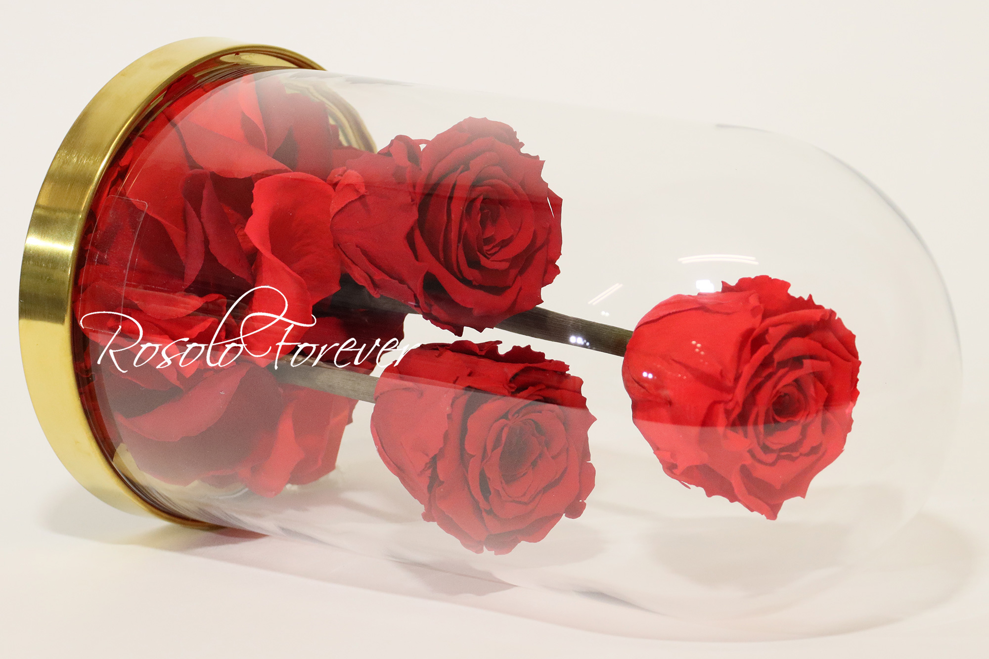 3 Roses L sous cloche CHF 135.00
