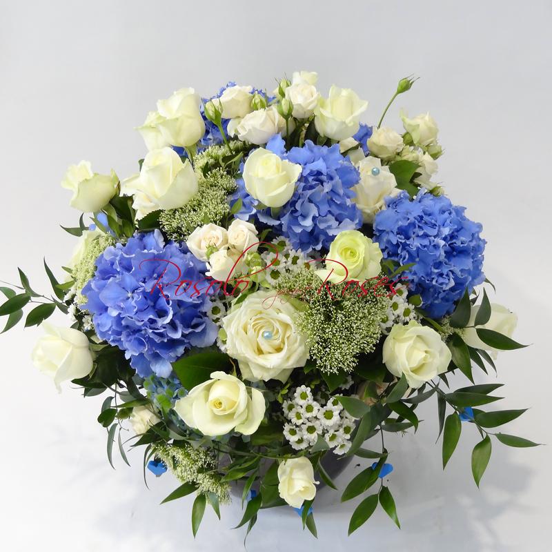 Roses & Hortensia en blanc et bleu