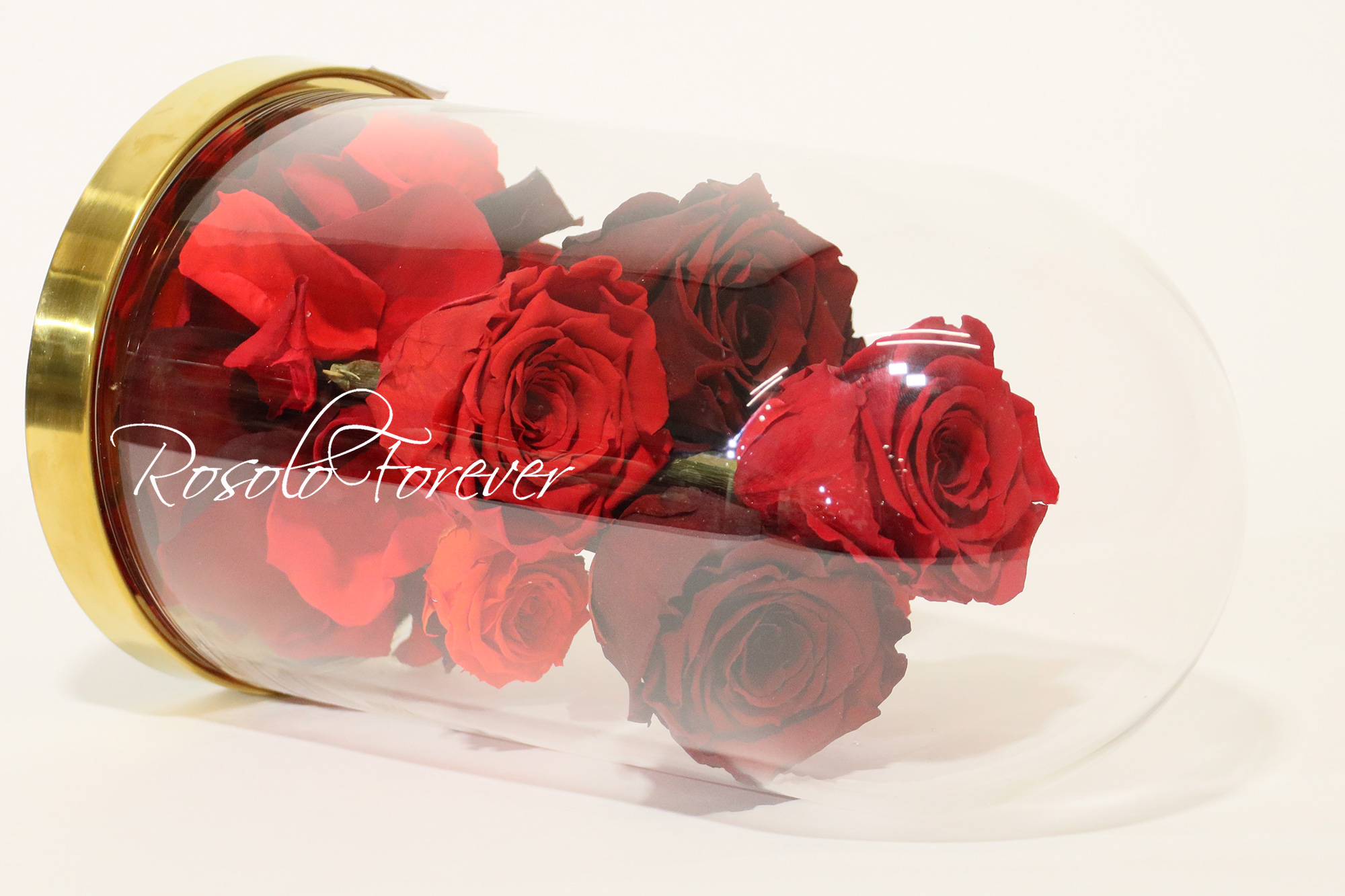 7 Roses sous cloche CHF 190.00