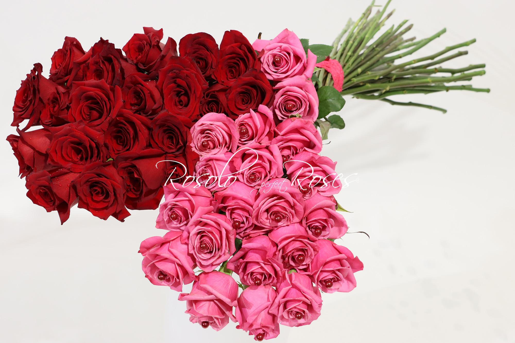 40 grandes roses CHF 395.00 - livraison rapide