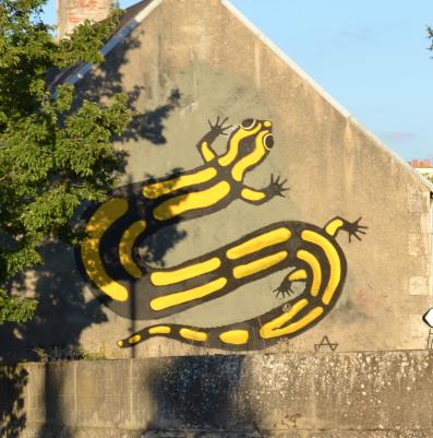...en Salamandre par Alain Juteau