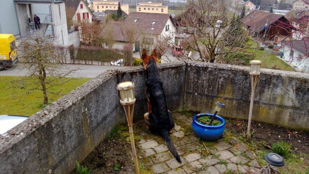 Der geheime Beobachtungsposten von Celta