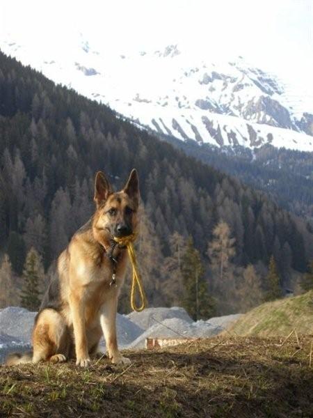 Paya posiert für ein Foto vor den Bergen