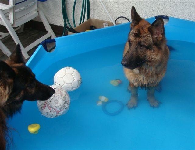 Jailo fordert Nannuc zum baden auf