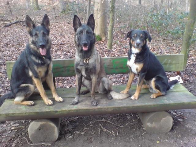 Nanga vom Steigbächli zusammen mit ihren Freunden