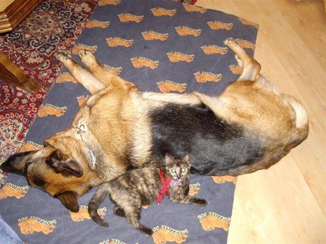 Kabora mit dem neuesten Familienmitglied