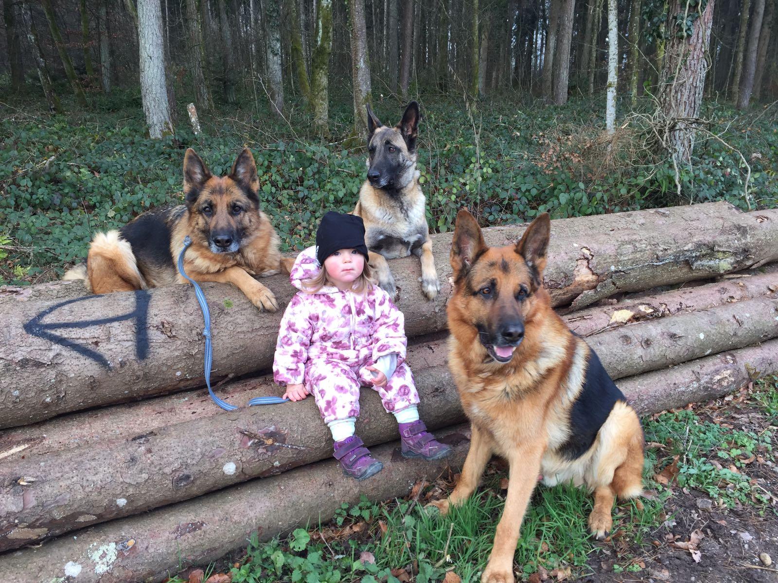 Lia mit den drei Hunden Thayler vom Steigbächli, Amira vom Steigbächli und Joy
