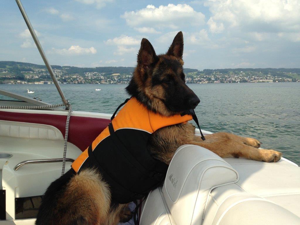 Cresh macht es sich ja ganz schön gemütlich auf dem Boot