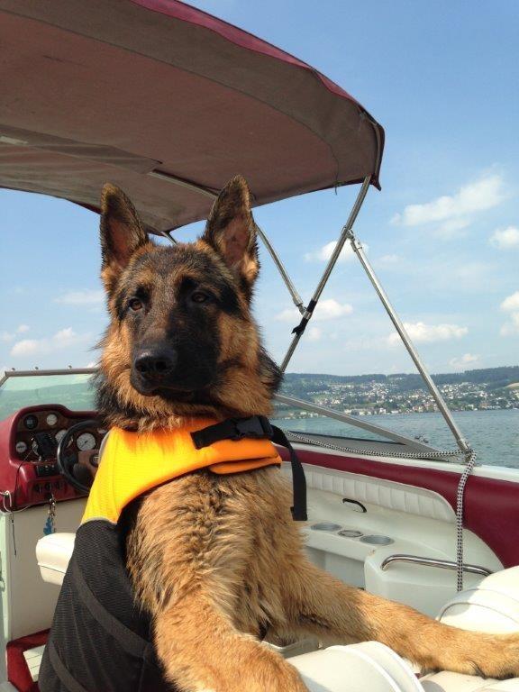 Ist irgendwo Land in Sicht; Cresh hat im Boot alles unter Kontrolle