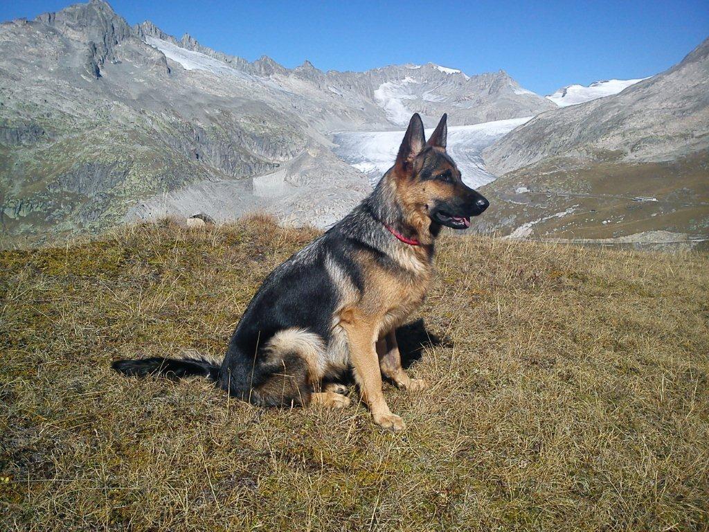 Xenia geniesst die herrliche Aussicht in den Bergen