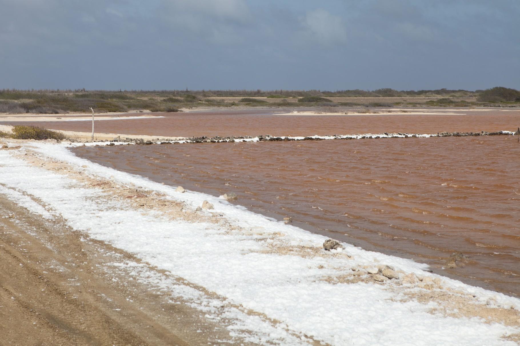 Salinen auf Bonaire