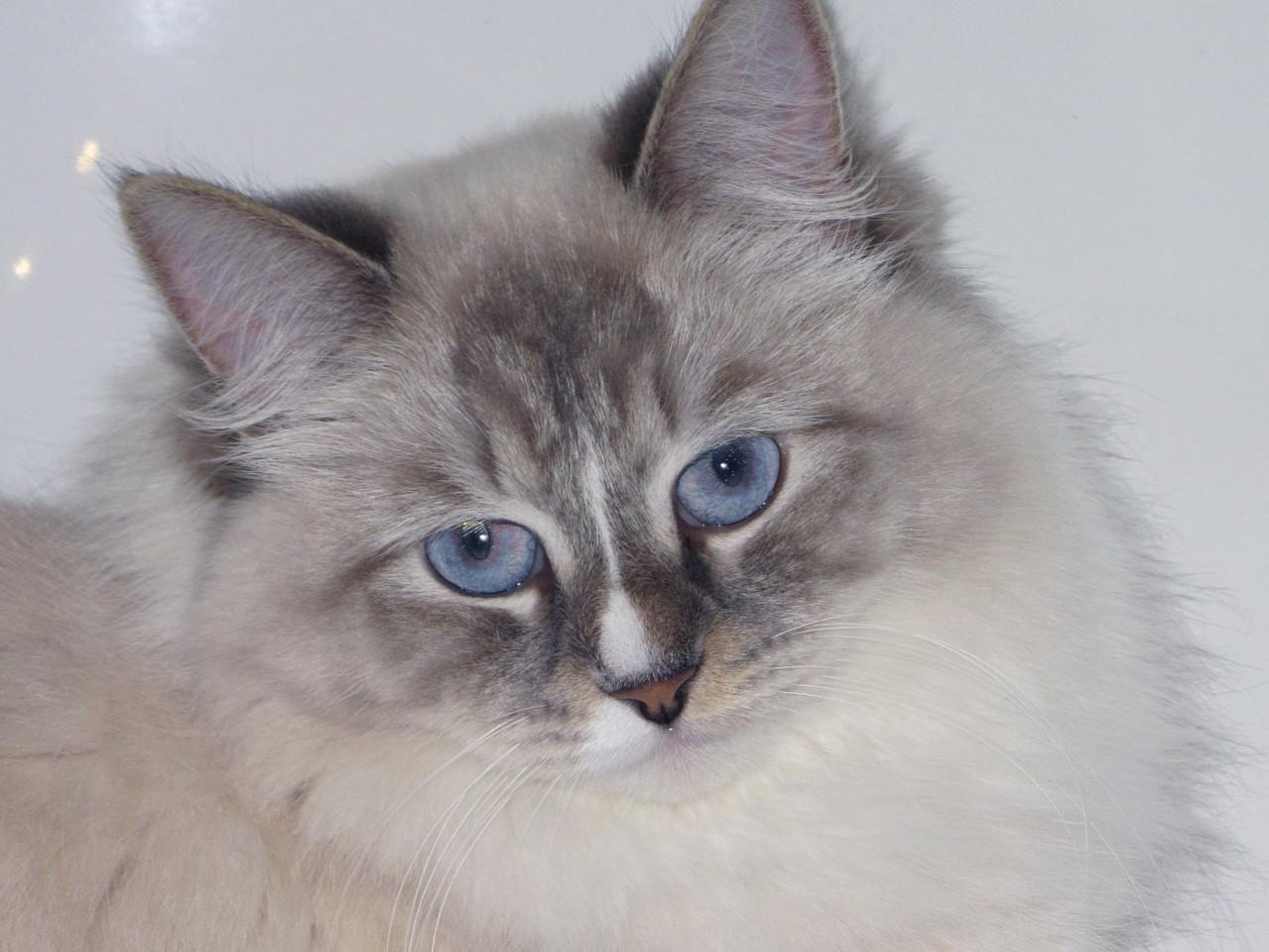 Дуняша, 2 года