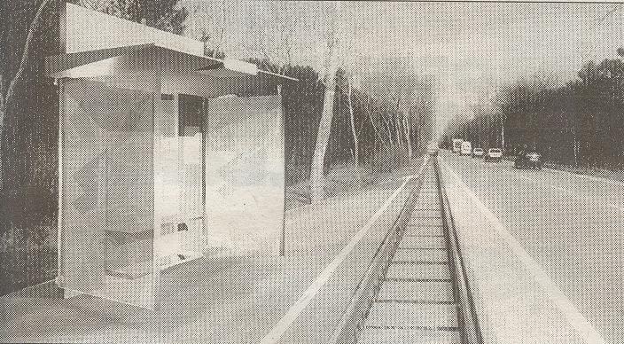"""Ipotesi di Fermata Tram su Via Trieste (dal progetto """"Pineta Express"""")"""