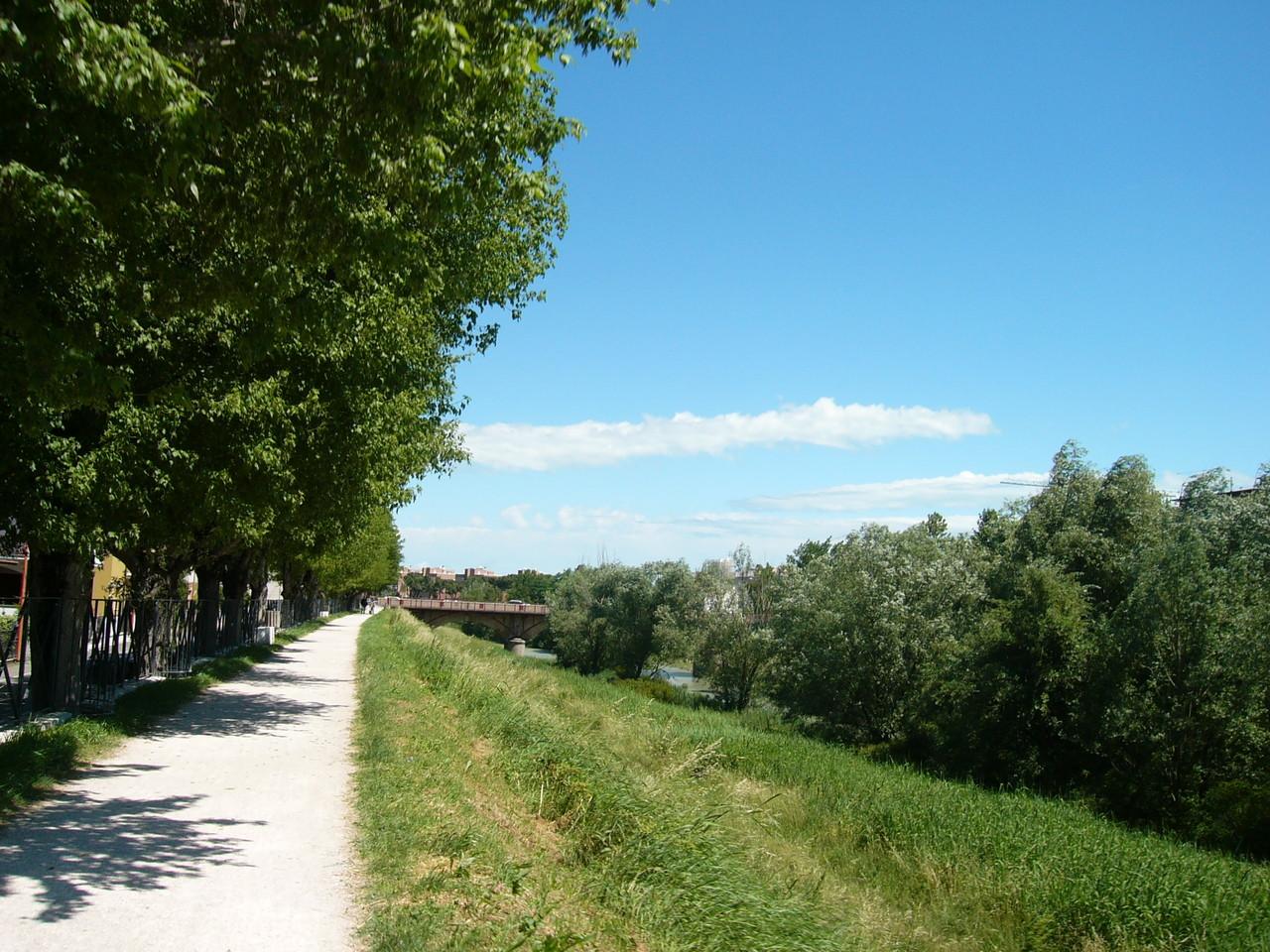 Ciclabile del Savio in centro a Cesena