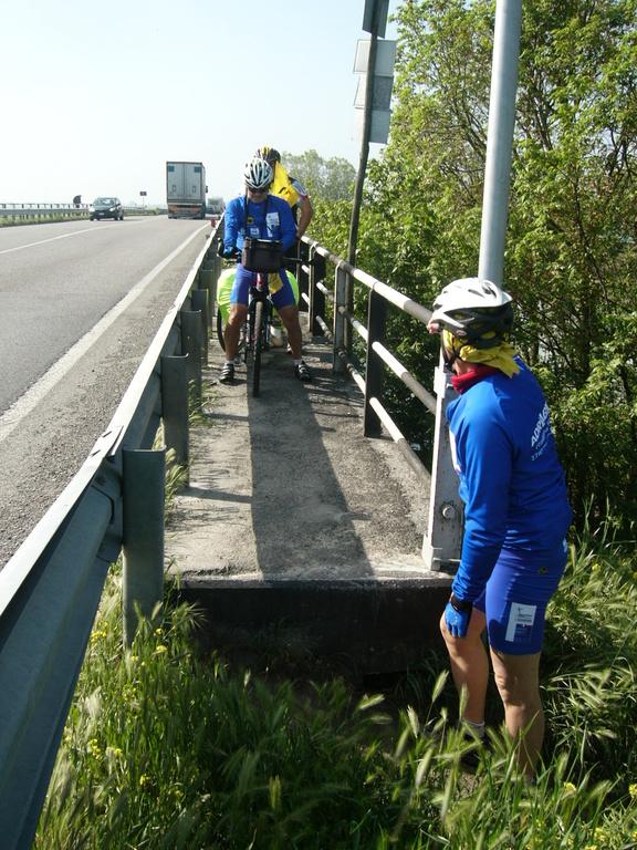 Il ponte della Romea sul Reno