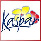 Blumen Kaspar Trauerfloristen Alb-Donau-Kreis lexikon-bestattungen