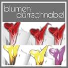 Blumen Dürrschnabel Trauerfloristen Rastatt lexikon-bestattungen