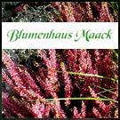 Blumenhaus Karl Maack, Friedhofsgärtner Hamburg-Nord, Bestattungsdienste, lexikon-bestattungen