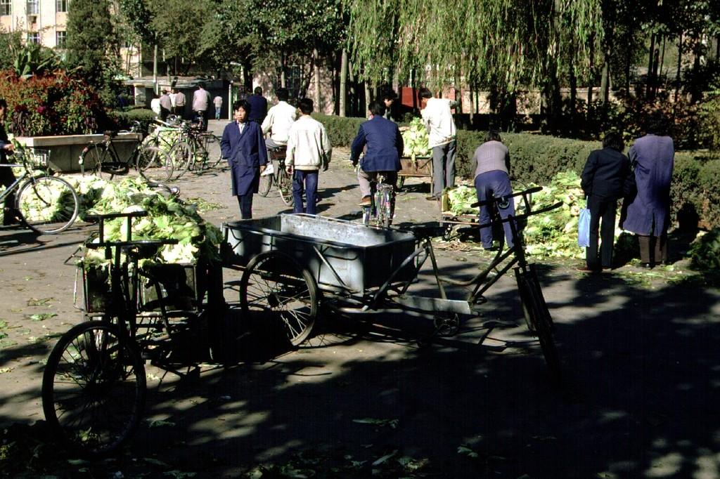 Beijing cabbage market