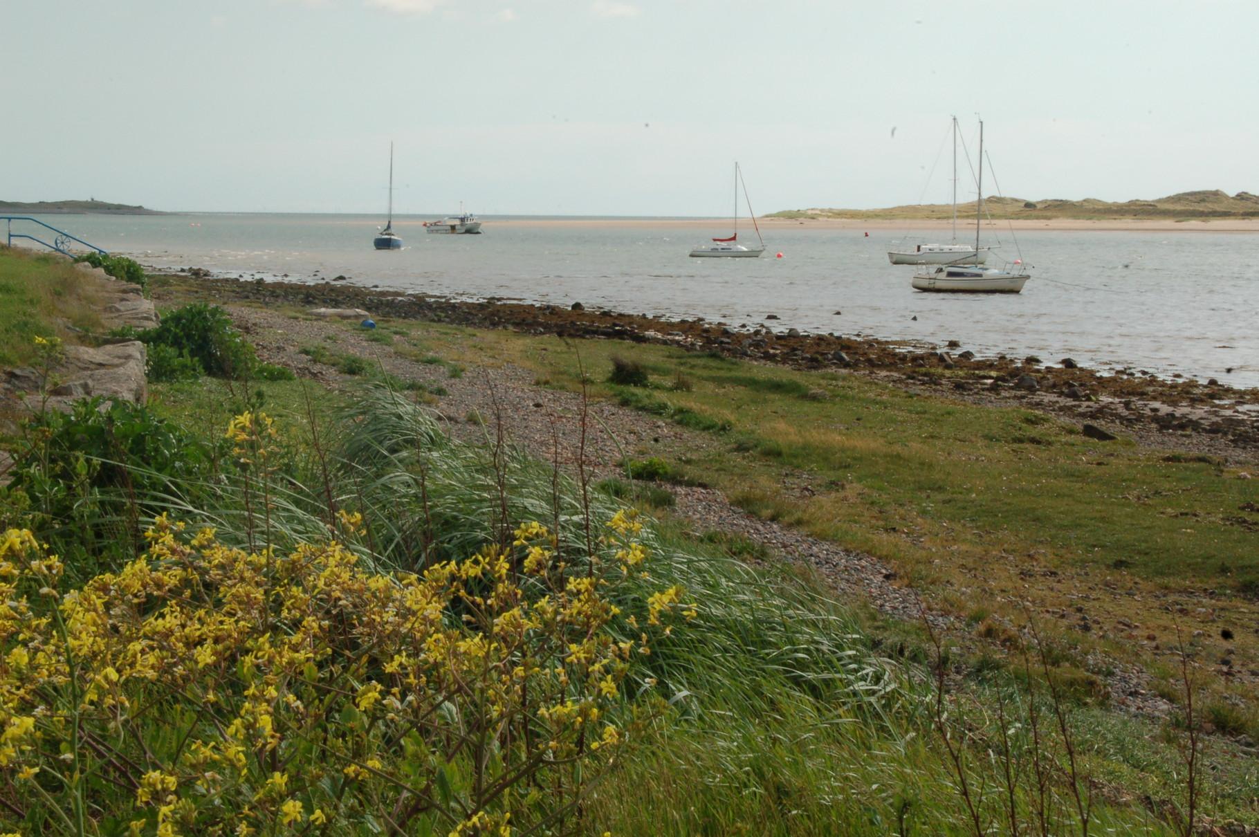 Ravenglass harbour