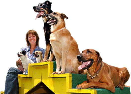 Hundetrainer Susanne Zischgl