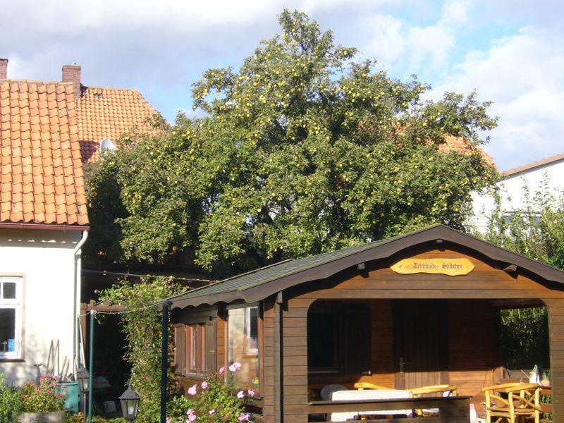 Unser Garten am 18.9.2007