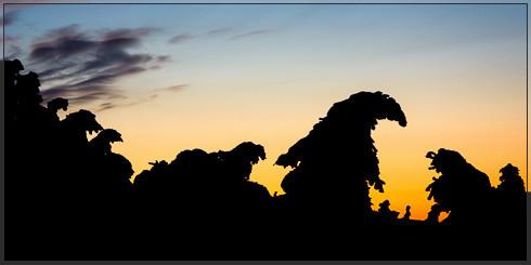 Brockengeiser im Sonnenuntergang (Brockenm, Harz, Mittelgebirge, Blocksberg, Winter, Kampfzone, Wandern, Ski, Langlauf, Schneeschuh, Jens Bachmann)