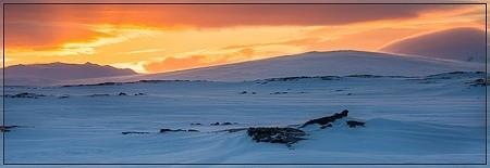Looking over the vast lava fields of the Útbruni towards Eggert, Kollóttadyngja and Herðubreið (herdubreid, utbruni, odadahraun, ódáðahraun, frambruni, botni, bræðrafell, fjarholaborg, askja, dyngjufjöll, trölladyngja, winter, ski, pulk, tent, expedition)