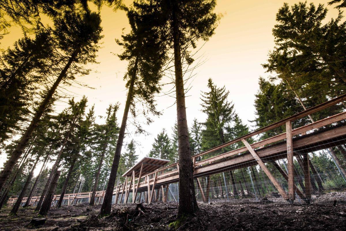 Wildhaus | Wildpark Mehlmeisel