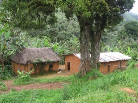 Rural house near Bamenda