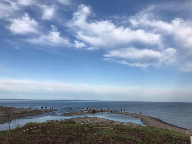 スタッフブログ 鮭釣り(その4 釣り場の写真)