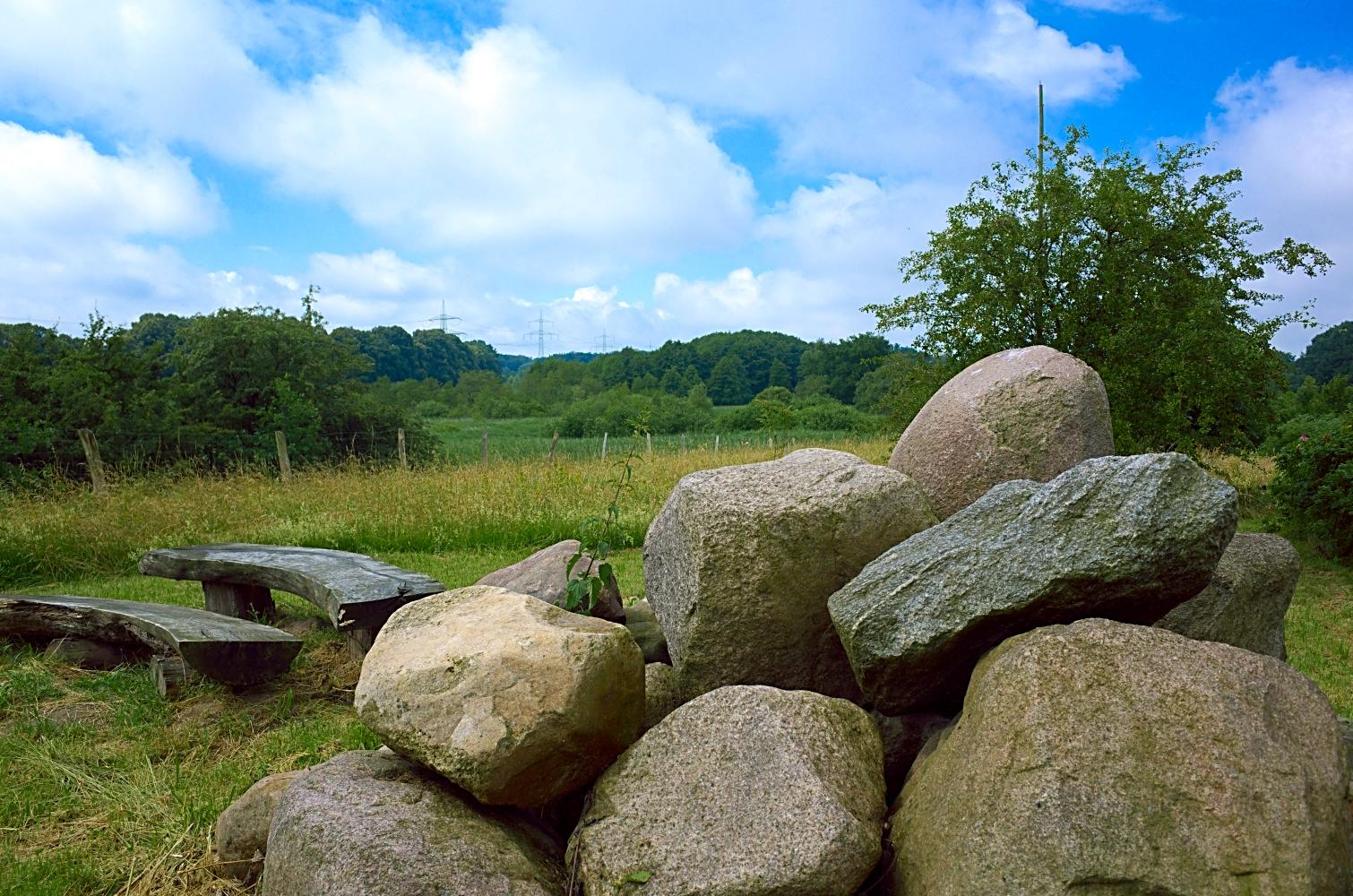 Crivitz - Im Arboretum am 29.06.2016