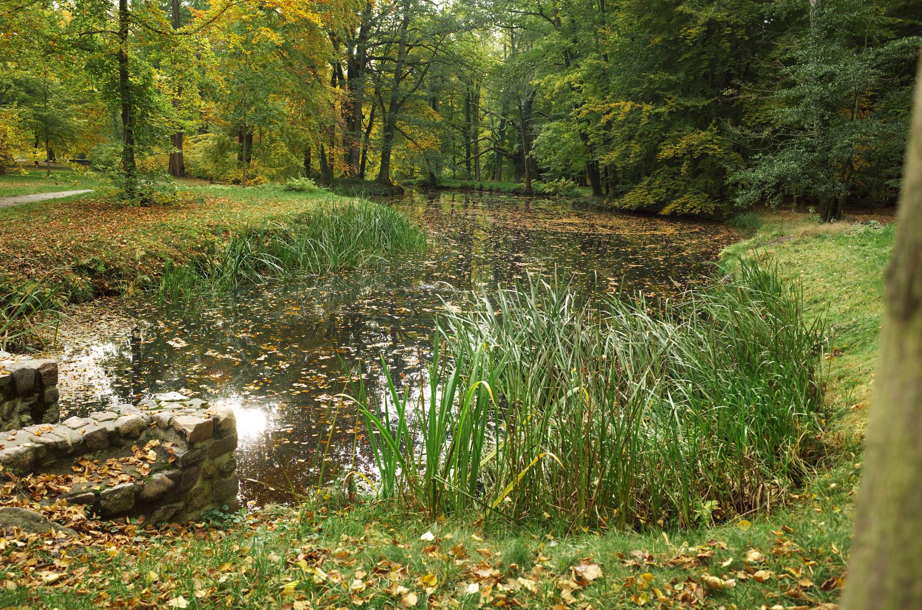 Schlosspark Ludwigslust am 21.10.2015