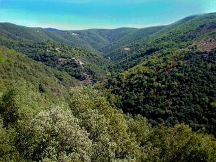 la vallée vue de la terrasse
