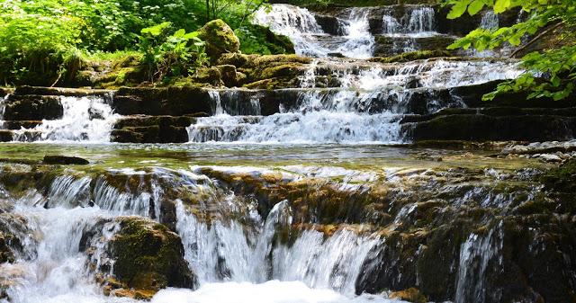 Fluss, Leben im Fluss, Wasserfall