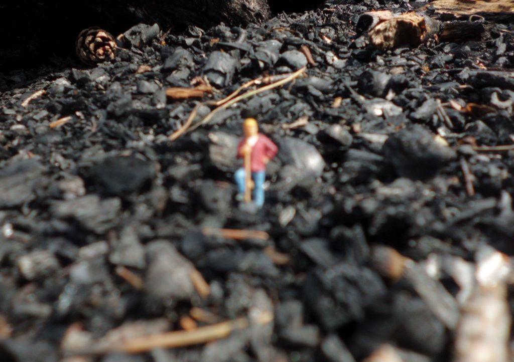 Immer gehts nur um die Kohle?
