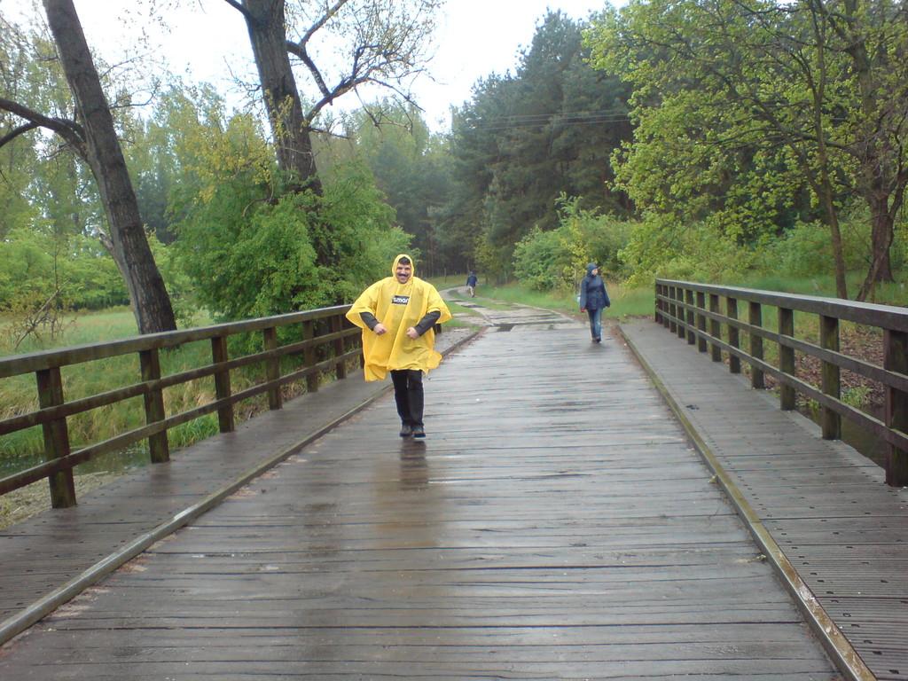 Brücke bei Michaelisbruch 2010
