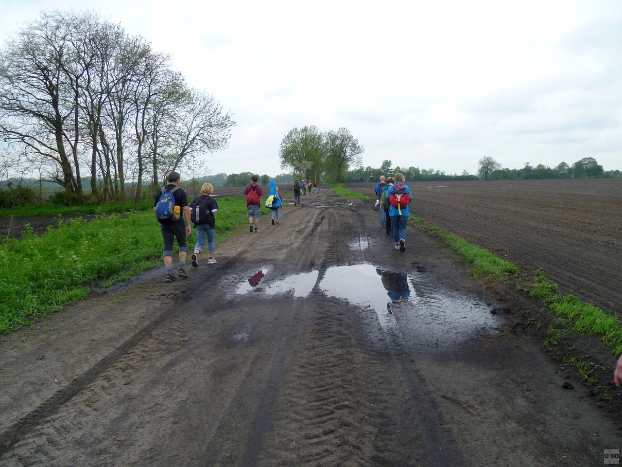 Feldweg bei Utershorst
