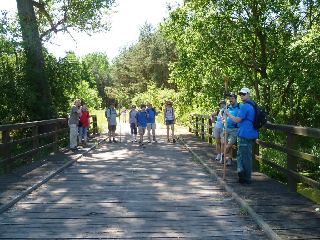die Holzbrücke bei Michaelisbruch