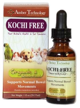 cómo matar homeopáticamente a los parásitos del perro