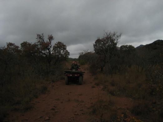 Ingwe, stagione piogge