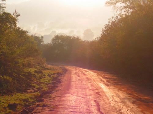 nebbie al mattino