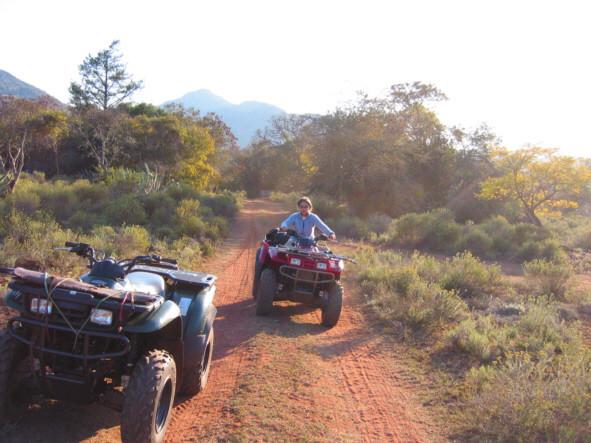 100 Km quadri di bush