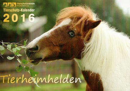 Titel für den Kalender des Tierheim München 2016