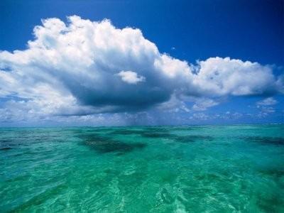 Verdes aguas del Oceano