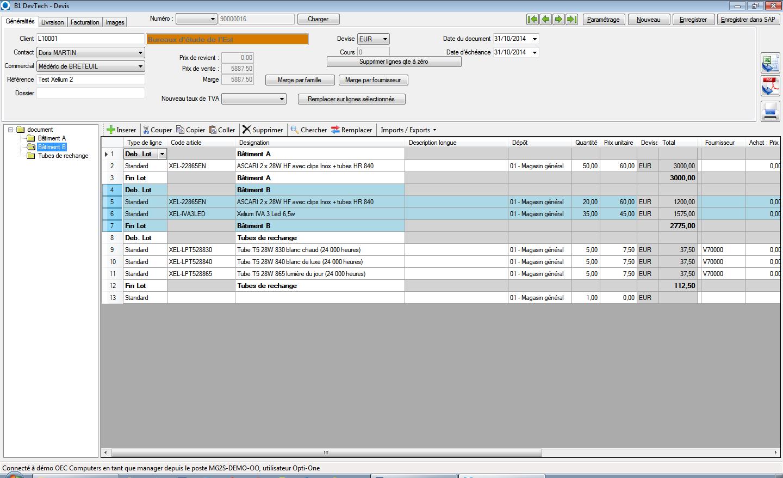 interface de saisie de devis avec regroupements par lots