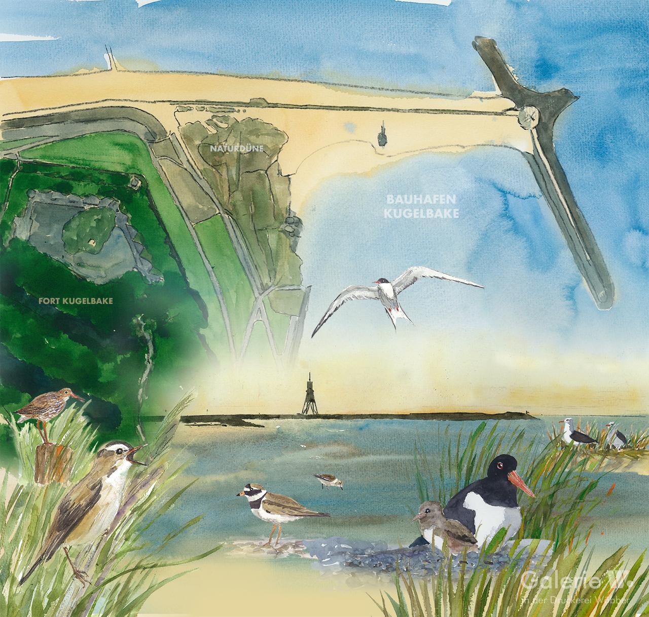 Naturschutzgebiet Bauhafen