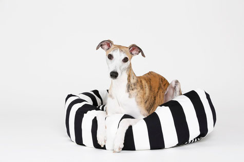 Kuschelbett für Hunde